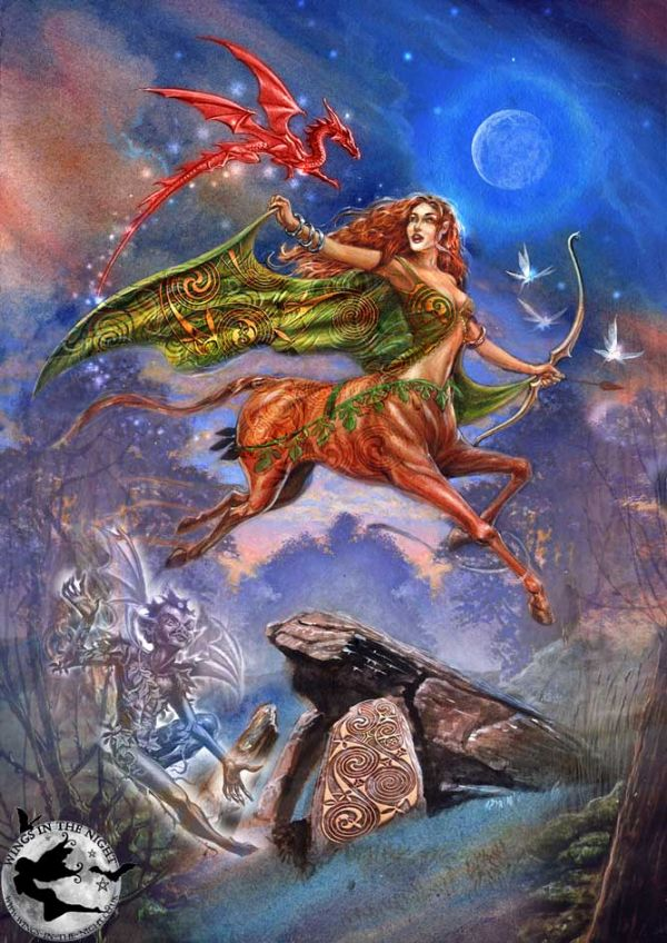 Pagan witchcraft wiccan greeting cards briar flight of rhiannon greeting card m4hsunfo